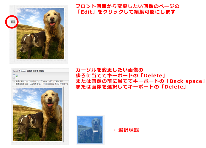 画像の変更、削除方法画像